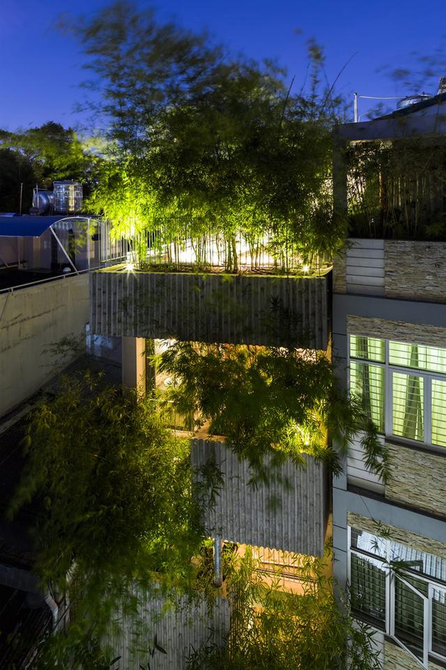 Với diện tích hẹp bề ngang và sâu, ngôi nhà ống được thiết kế 5 tầng với toàn bộ mặt tiền được phủ màu xanh tươi mát của cây tre.