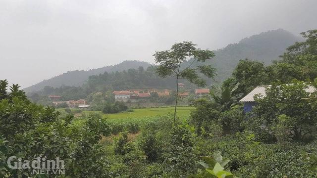 Từ tháng 3/2016, khu Điền Viên Thôn đã bị chính quyền địa phương yêu cầu dừng mọi hoạt động kinh doanh dịch vụ, để phục vụ hoạt động thanh tra về những sai phạm đất đai, xây dựng trái phép tại đây.