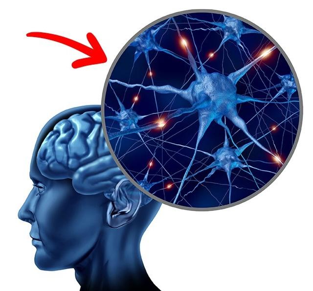Choline là một chất vô cùng quan trọng với não bộ, đồng thời còn giúp làm giảm nguy cơ ung thư.