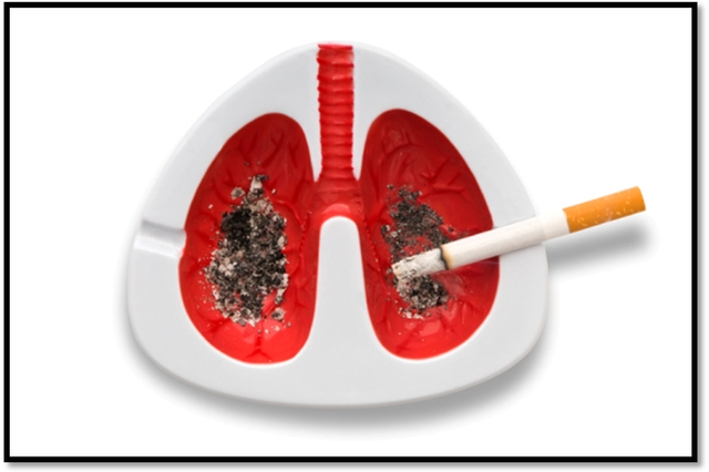 Thuốc lá trong khi đốt cháy thành khói phát tán ra rất nhiều hóa chất có khả năng gây ung thư. (Ảnh minh họa).
