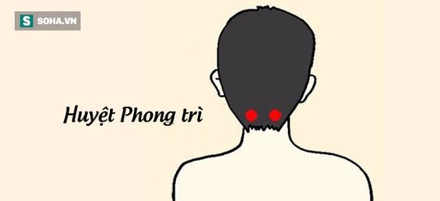 Vị trí huyệt Phong Trì. (Tranh: Nguồn Internet).