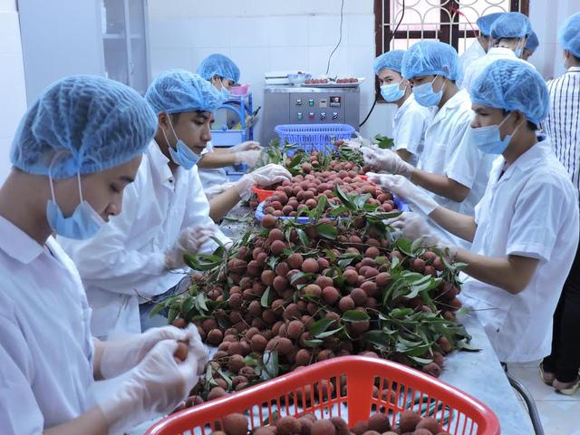 Các mặt hàng nông sản của Việt Nam, nếu có quy trình canh tác chuẩn, đạt nguyên tắc của 1 vài quý khách hàng thì phân khúc sẽ tự động được khai thông