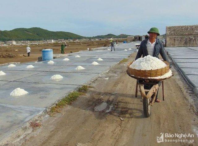 Anh Hồ Sỹ Liệu ở thôn Đức Long, xã Quỳnh Thuận (Quỳnh Lưu) phấn khởi thu hoạch muối. Ảnh: Như Thủy