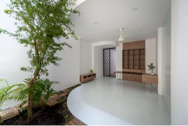 Bên trong là không gian thoáng đãng với vườn cây và giếng trời.
