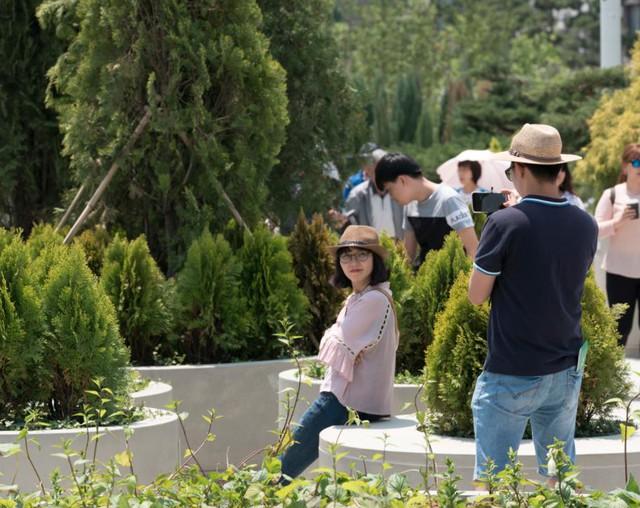 Các cây này được sắp xếp theo thứ tự bảng chữ cái để du khách có thể thuận lợi phân biệt, đồng thời nghiên cứu thêm những kiến thức về thực vật.