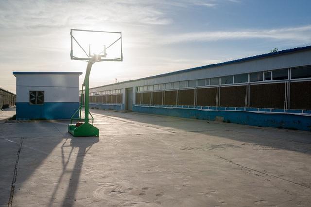 Chơi bóng rổ là phương thức giải trí duy nhất của các thợ mỏ