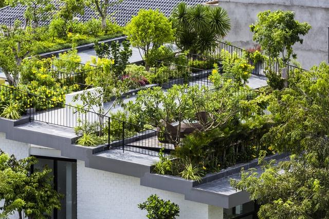 Mái của ngôi nhà được trồng rất nhiều cây xanh cho bóng mát và không khí trong lành hệt như một công viên thu nhỏ giữa lòng thành phố biển.