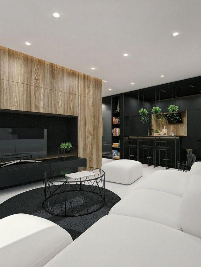 Không chỉ gây ấn tượng đặc thù bởi 2 tông màu đối lập đen-trắng, sự xuất hiện của cây xanh và hệ tủ gỗ nơi phòng khách càng khiến cho không gian phát triển thành nổi trội hơn.