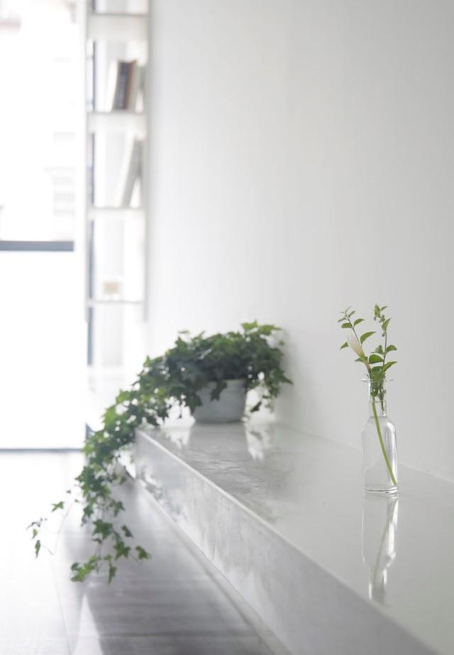 Một bên hông nhà được kiến trúc 1 kệ chạy dài giúp chủ nhà có trưng bày các vật trang trí bắt mắt, làm đẹp cho tổ ấm của mình.