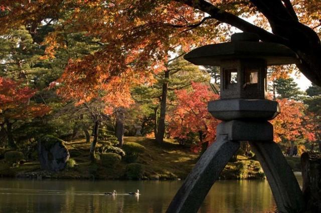 9. Vườn Kenrokuen, Kanazawa. Kanazawa có rất nhiều nơi tuyệt vời để ngắm những chiếc lá mùa thu nhưng nơi tuyệt vời nhất là Vườn Kenrokuen, được công nhận là một trong ba khu vườn cảnh quan hàng đầu của Nhật Bản.
