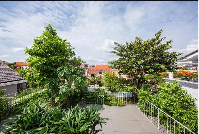 Tầng thượng của ngôi nhà là cả một vườn cây xanh mát chẳng khác gì một công viên thu nhỏ trên cao.