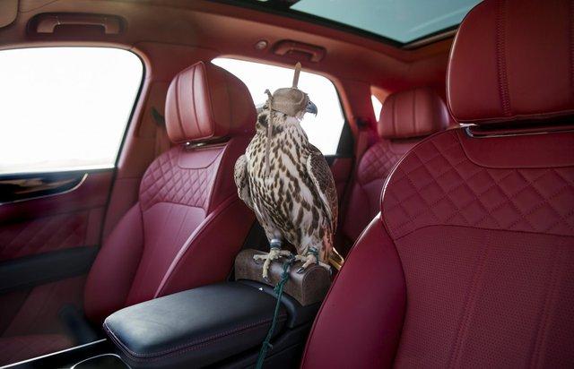 Nội thất của xe được bọc da đỏ thẫm quý tộc. Giá đậu được thiết kế để chim ưng có thể ở bên cạnh chủ nhân khi di chuyển.