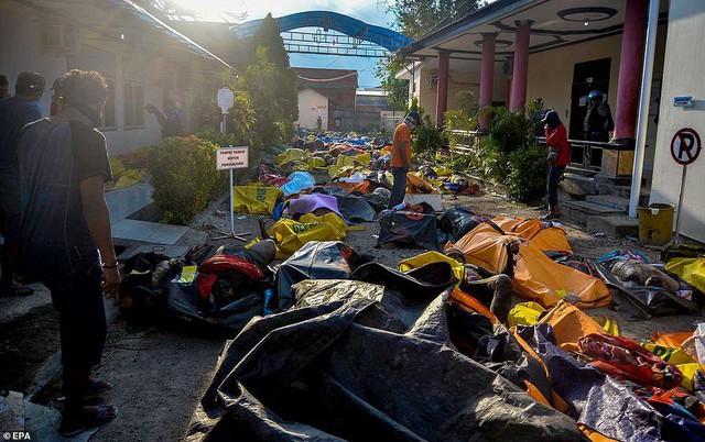 Thảm cảnh máy xúc đào mồ chôn tập thể cho các nạn nhân động đất, sóng thần Indonesia - Ảnh 5.