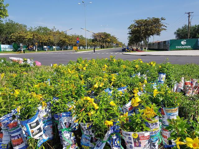 Dấu hiệu hồi sinh của các dự án tỷ USD ở Nhơn Trạch - Ảnh 1.