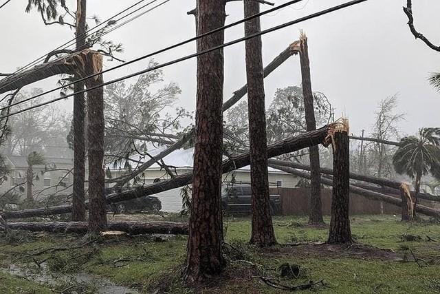 Siêu bão Michael đổ bộ vào Mỹ và Panama có sức tàn phá khủng khiếp - Ảnh 12.