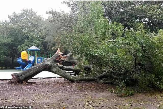 Siêu bão Michael đổ bộ vào Mỹ và Panama có sức tàn phá khủng khiếp - Ảnh 17.