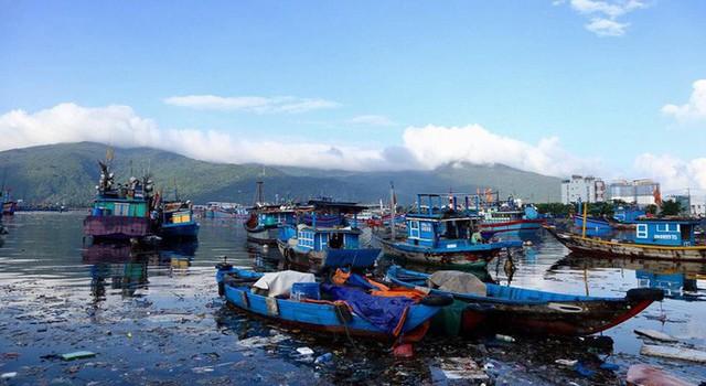 Cảng cá lớn nhất miền Trung nước đen ngòm, bốc mùi hôi thối - Ảnh 10.