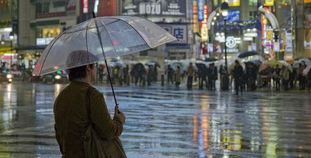Vì sao những món đồ thất lạc ở Nhật Bản lại có thể tìm về với chủ? Sự trung thực chỉ là 1 trong các lí do - Ảnh 3.
