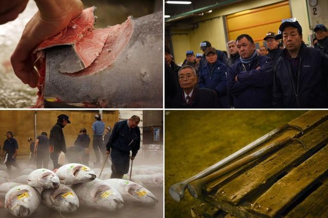 Kỷ nguyên mới cho chợ cá lâu đời nhất Nhật Bản, nơi xử lý 1.600 tấn hải sản mỗi ngày - Ảnh 6.