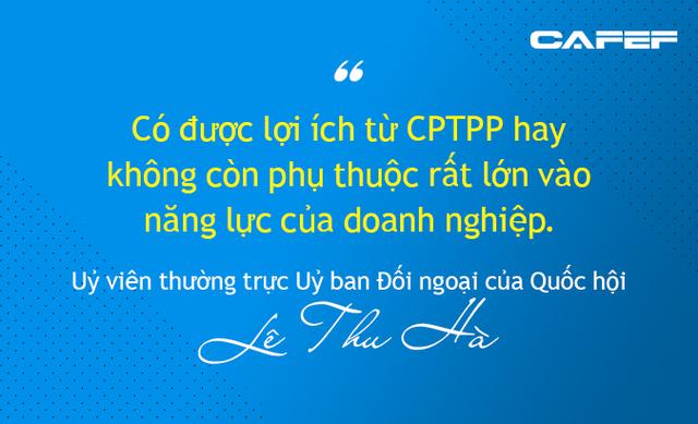 Mừng - lo Hiệp định CPTPP dưới góc nhìn từ Nhà nước, Chính phủ đến doanh nghiệp - Ảnh 6.