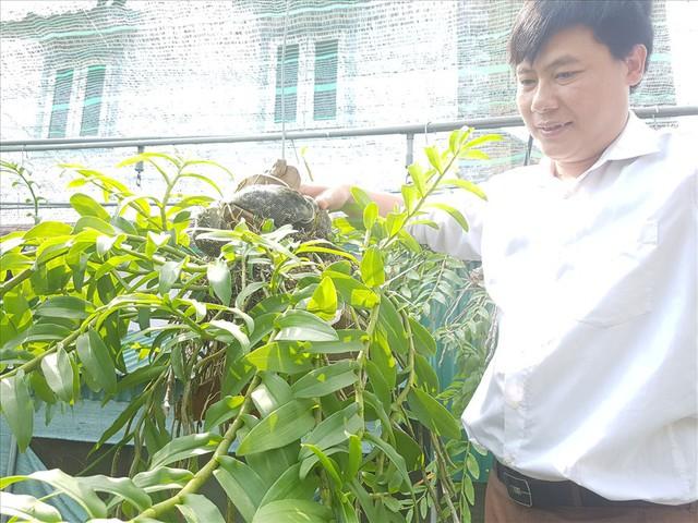 Hà Tĩnh: Thầy giáo dạy sinh học trường làng sở hữu vườn lan tiền tỷ - Ảnh 2.