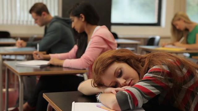 Tiến sĩ Oxford: Học sinh ngủ trong lớp đâu phải vì lười, giáo dục nên coi giấc ngủ như một phần trọng tâm - Ảnh 3.