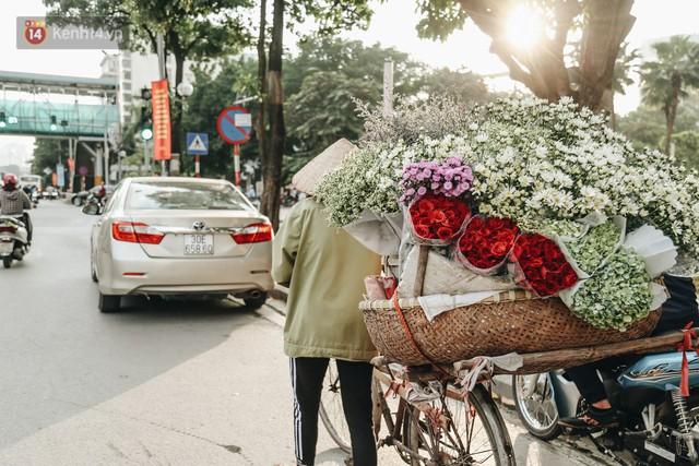 Cúc hoạ mi vào vụ mùa, nông dân Hà Nội hớn hở chào mừng khách đến mua hoa và chụp ảnh - Ảnh 17.