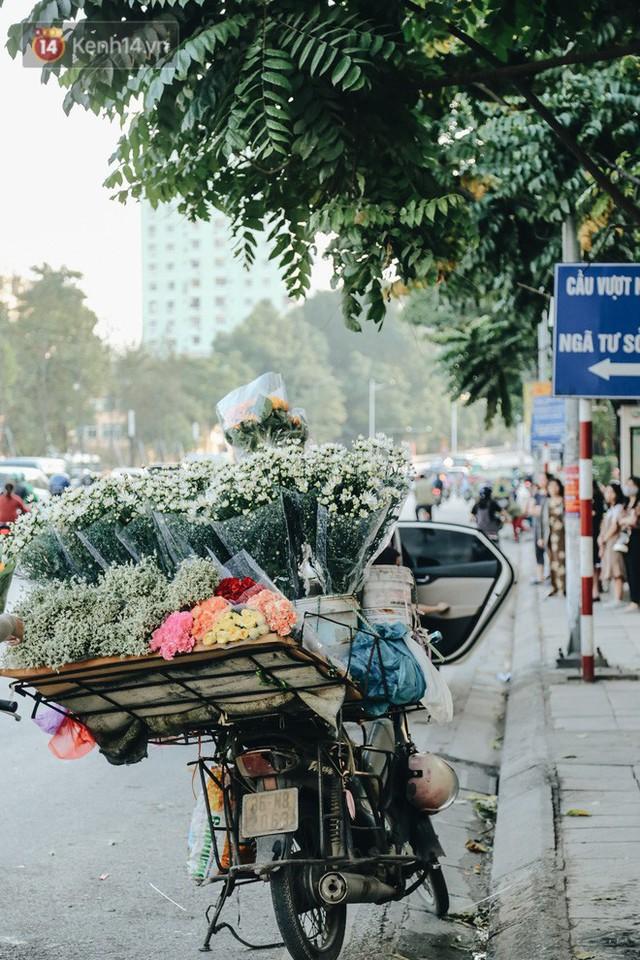 Cúc hoạ mi vào vụ mùa, nông dân Hà Nội hớn hở chào mừng khách đến mua hoa và chụp ảnh - Ảnh 22.