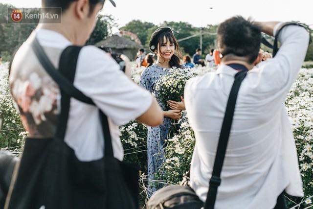 Vườn cúc hoạ mi ở Hà Nội thất thủ cuối tuần: 1 mét vuông có chục nhiếp ảnh gia và mẫu - Ảnh 15.