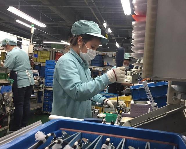 Hàng ngàn người Việt trước cơ hội làm việc lâu dài ở Nhật - Ảnh 1.
