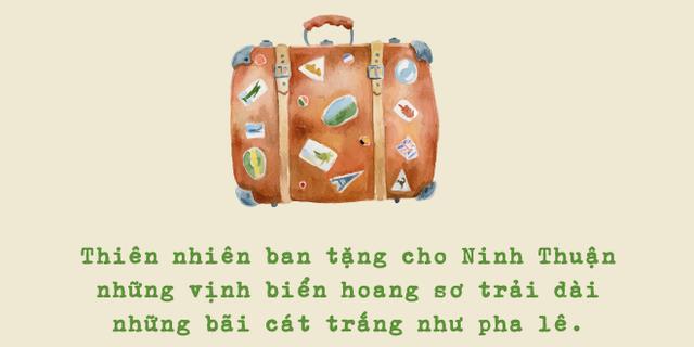Ninh Thuận và những trải nghiệm hiếm có trong đời - Ảnh 2.