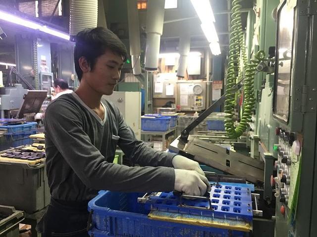 Nhật mở cửa 14 nghề, lao động Việt Nam có thể ở lại dài hạn - Ảnh 1.