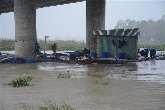 Người dân Quảng Nam chua xót nhìn 60 tấn cá bị lũ cuốn trôi - Ảnh 3.