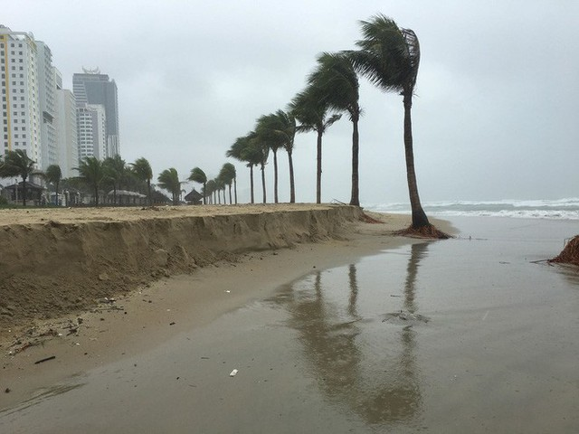 Cận cảnh bãi biển đẹp nhất hành tinh sạt lở kinh hoàng sau trận mưa lịch sử ở Đà Nẵng - Ảnh 6.