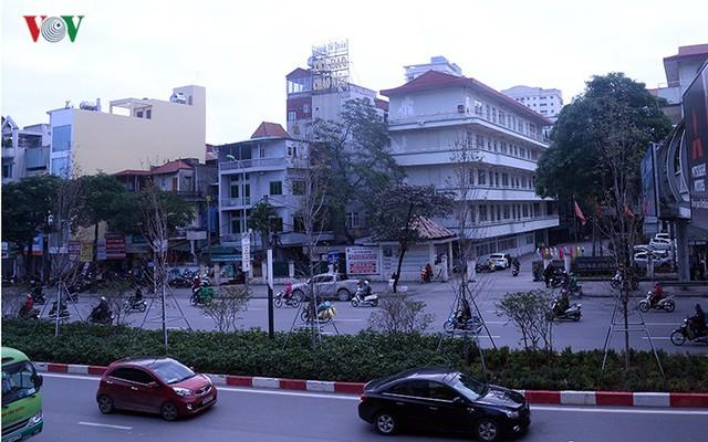 Hàng cây phong ở Hà Nội trơ cành, khô héo ngay đầu mùa đông - Ảnh 16.