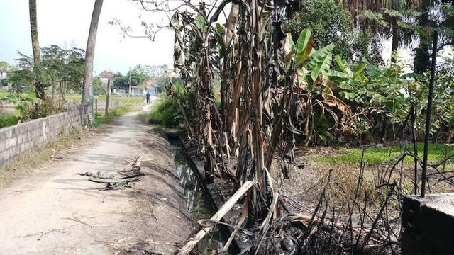 Vụ hàng nghìn lít dầu tràn ở Thanh Hóa: Dân làng đổ xô mang can ra hớt dầu - Ảnh 3.