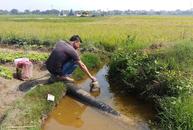 Vụ hàng nghìn lít dầu tràn ở Thanh Hóa: Dân làng đổ xô mang can ra hớt dầu - Ảnh 5.