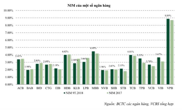 Năm 2018 - 2019, tín dụng tăng chỉ 15%, NIM ngân hàng khó cải thiện - Ảnh 3.