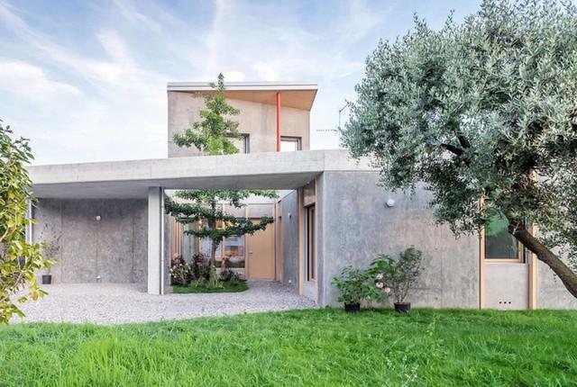 Ngôi nhà được xử lý để thông gió và đón nắng tốt - Ảnh 1.