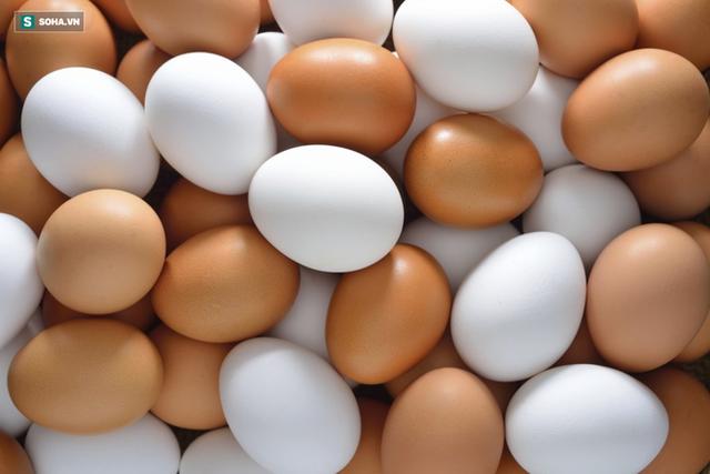 Trứng gà chạy bộ có tốt hơn trứng gà nuôi nhốt: Bạn có đang mua trứng đúng giá trị thật? - Ảnh 2.