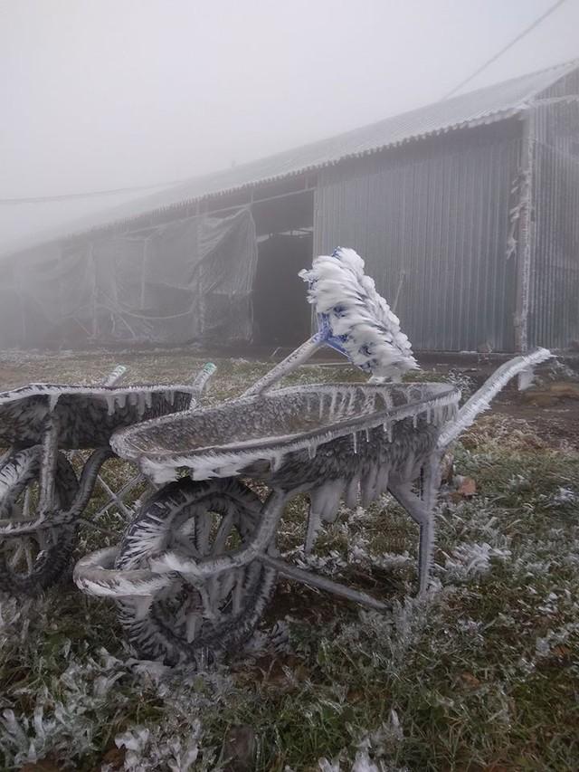 Băng tuyết phủ trắng nhà cửa, xe cộ ở đỉnh Mẫu Sơn - Ảnh 7.