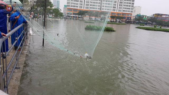 Hình ảnh chưa từng có ở Đà Nẵng: Xuồng bơi trên phố, người dân quăng lưới bắt cá giữa biển nước mênh mông - Ảnh 16.