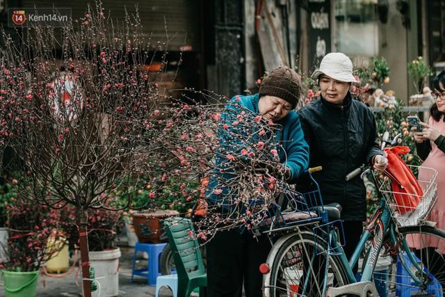 Chùm ảnh: Ghé thăm chợ hoa truyền thống lâu đời nhất Hà Nội - cả năm chỉ họp đúng một phiên duy nhất - Ảnh 19.