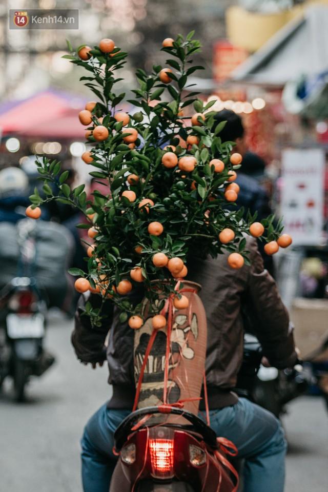 Chùm ảnh: Ghé thăm chợ hoa truyền thống lâu đời nhất Hà Nội - cả năm chỉ họp đúng một phiên duy nhất - Ảnh 9.