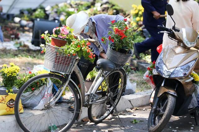Bế mạc hội hoa xuân Tao Đàn, người dân mót lại hoa sắp cho vào xe rác - Ảnh 13.