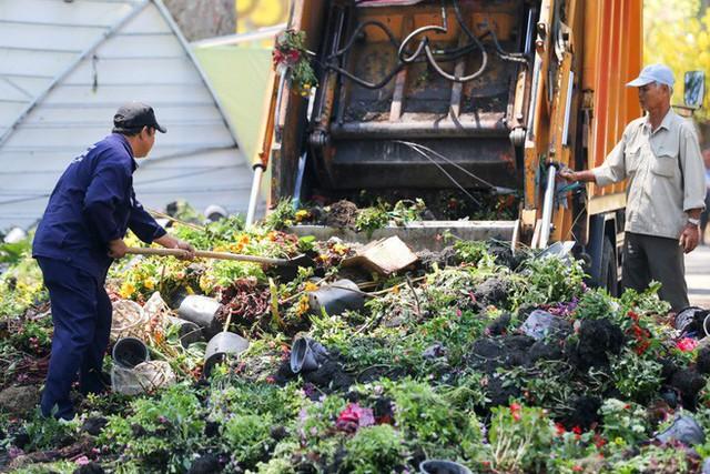 Bế mạc hội hoa xuân Tao Đàn, người dân mót lại hoa sắp cho vào xe rác - Ảnh 3.
