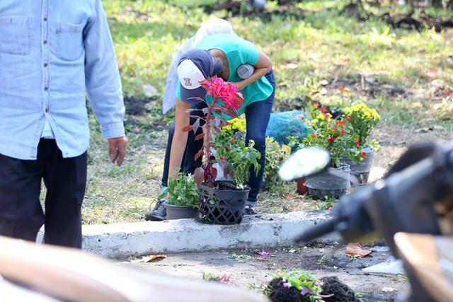 Bế mạc hội hoa xuân Tao Đàn, người dân mót lại hoa sắp cho vào xe rác - Ảnh 8.