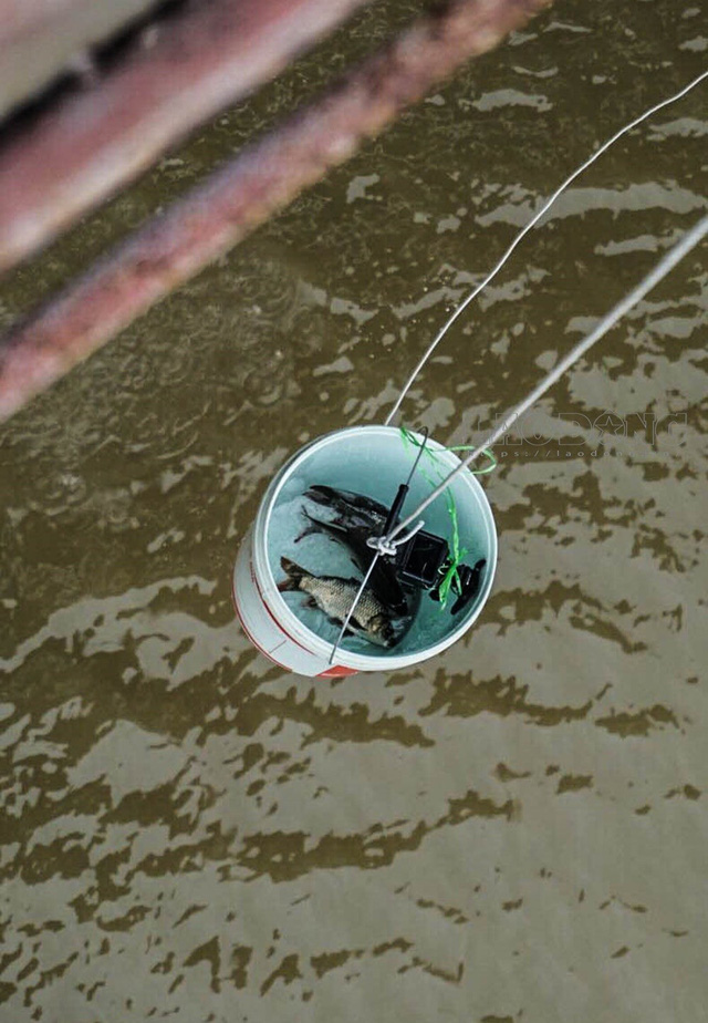 Sợ tắc đường, dân thủ đô thả cá chép tiễn ông Công ông Táo về trời sớm - Ảnh 6.