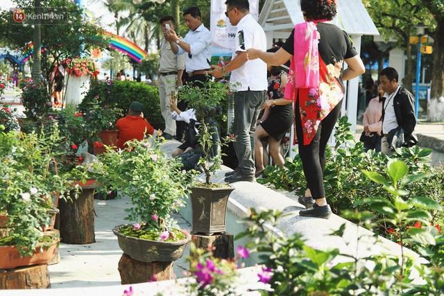 Hình ảnh xấu xí tại lễ hội hoa hồng Bulgaria: Người dân trèo rào, kéo hoa bất chấp để chụp ảnh - Ảnh 7.