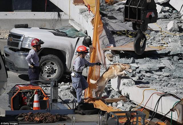 Hình ảnh đáng sợ tại hiện trường vụ sập cầu ở Mỹ khiến nhiều ô tô bị đè bẹp - Ảnh 9.